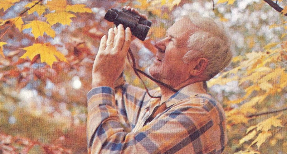 Charley Harper observing birds among the autumn foliage
